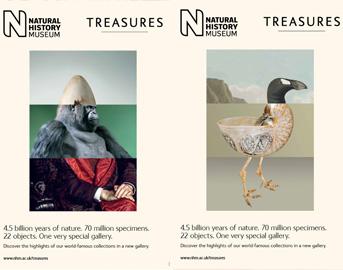 natural_history_posters2