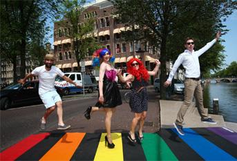 gay_pride_zebra