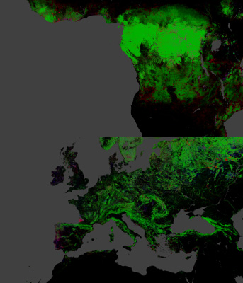 global_forest_change_map