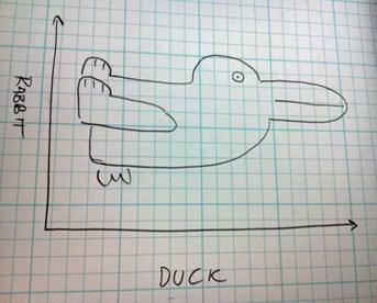 rabbit_duck